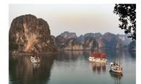 Koran Malaysia menilai bahwa Vietnam mendapat banyak peluang untuk mencapai pertumbuhan dengan APEC