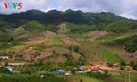 Keindahan daerah dataran tinggi Moc Chau
