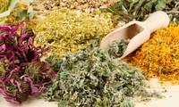 Kedokteran Tradisional Vietnam