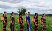 Kerajinan anyam- menganyam tradisional dari warga etnis minoritas Pa Ko