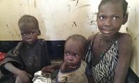 Bentrokan di Sudan Selatan menimbulkan pengaruh terhadap separo jumlah anak-anak di negeri ini