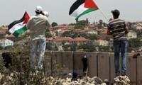 """阿盟考虑撤回""""阿拉伯和平倡议"""""""