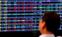9月14日越南金市和股市简讯