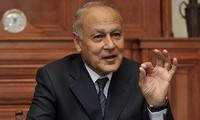 阿拉伯联盟支持中东和平进程的两国方案