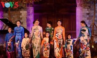 """弘扬越南妇女的""""妩媚奥黛""""比赛在胡市举行"""
