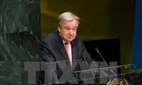 联合国秘书长古特雷斯谴责以色列决定新建定居点