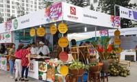 河内首次举办国际娱乐饮食文化节