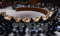 玻利维亚6月担任联合国安理会轮值主席国
