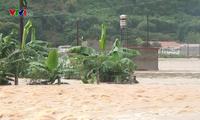 越南各地紧急克服洪灾影响