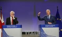 英脱欧:欧盟建议脱欧过渡期最多为20个月