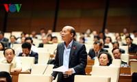 越南国会讨论《越南驻外代表机构法修正案》