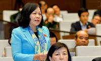 越南国会要颁布胡志明市发展机制政策决议