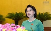 越南国会主席阮氏金银出席东南部省市人民议会常委会会议