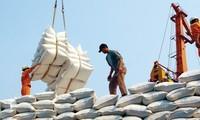 Raising the value of Vietnam's export rice