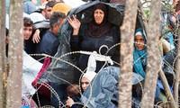 Hundreds of refugees cross Macedonia's border