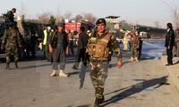 Dozens of Taliban militants killed in Afghanistan