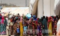 600,000 children trapped in Mosul