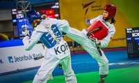 Vietnam wins silver taekwondo medal on global stage