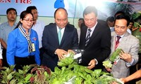 Prime Minister urges Ben Tre province to promote start-ups