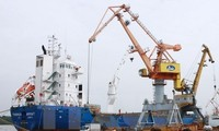 Vietnam's exports to Algeria grow 17 percent