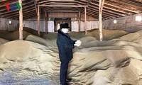 Vietnamese farm owner shines in Russian region