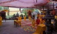 Về với không gian văn hoá miền đất Ninh Giang, Hải Dương