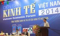 Diễn đàn kinh tế Việt Nam 2014