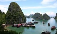 Nhiều hãng lữ hành nước ngoài tìm hiểu tiềm năng du lịch Việt Nam