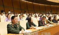 Quốc hội bầu Chủ tịch Hội đồng dân tộc, các Ủy ban của Quốc hội
