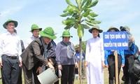 Trồng cây là đầu tư cho tương lai của cuộc sống