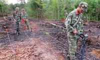 เวียดนาม – สหรัฐร่วมมือแก้ไขผลเสียหายจากกับระเบิดหลังสงคราม