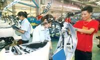 แสวงหามาตรการแก้ไขการขยายความร่วมมือด้านแรงงานระหว่างเวียดนามกับไทย