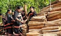 ชนเผ่าแหยเจียงที่ชายแดนเวียดนาม-ลาว