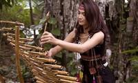 เอกลักษณ์เครื่องดนตรีไม้ไผ่ของเวียดนาม