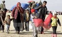 ไอแอลโอปฏิบัติโครงการฝึกอบรมทางอิเล็กทรอนิกให้แก่ผู้อพยพซีเรียในจอร์แดน