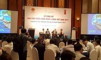 ประกาศรายงานความคืบหน้าด้านพลังงานของเวียดนามในปี 2017