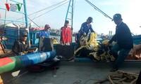 ชาวประมงจังหวัดแค้งหว่าเริ่มออกทะเลจับปลาในเขตทะเลของหมู่เกาะเจื่องซาหรือเสปรตลีย์