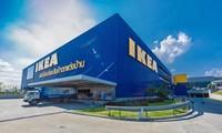 ตัวอย่างการรับผู้สูงอายุเข้าทำงานของห้าง IKEA ประเทศไทย