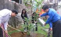 ท้องถิ่นต่างๆขานรับตรุษต๊ตปลูกต้นไม้รำลึกถึงประธานโฮจิมินห์