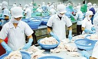 เวียดนามอาจจะยื่นฟ้องกระทรวงพาณิชย์สหรัฐเกี่ยวกับการเพิ่มภาษีต่อผลิตภัณฑ์ปลาที่ไม่มีเกล็ด