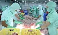 กระทรวงพาณิชย์สหรัฐบังคับใช้อัตราภาษีในระดับสูงต่อปลาสวายของเวียดนาม