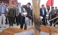 ประธานประเทศเปิดการรณรงค์ตรุษเต๊ตปลูกต้นไม้ที่จังหวัดแทงฮว้า