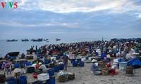 Sôi động chợ cá Tam Tiến