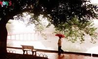 Lãng đãng mùa đông Hà Nội