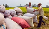 Mục tiêu của Tổ chức Nông lương LHQ xây dựng thế giới không đói nghèo