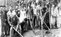 Hà Nam phát động trồng 350.000 cây xanh nhân dịp đầu Xuân