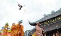 """Chương trình biểu diễn văn hóa nghệ thuật Phật giáo quốc tế với chủ đề """"Tâm sen trong lòng Phật"""""""