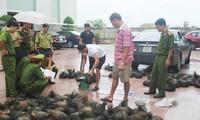 Tuyên truyền bảo vệ động vật hoang dã