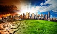 Năm 2016: Việt Nam thực hiện đồng bộ giải pháp ứng phó với biến đổi khí hậu