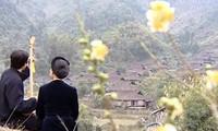 Dân tộc Nùng ở Việt Nam